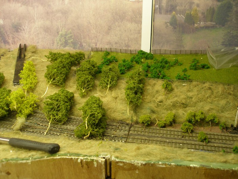 Hall Royd Junction (the model) showing the Kiln Clough culvert with Seafoam trees layed out.