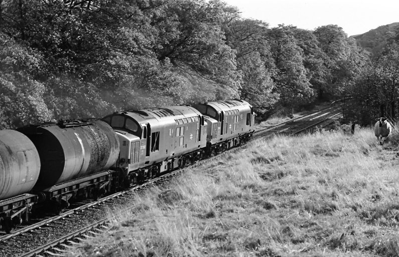 Class 37 37202 (nearest camera) and 37153 head towards Copy Pit and Cornholme with a tanker train that originated from Preston Docks on 26 October 1981